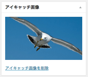 edit-eyecatch-fs8