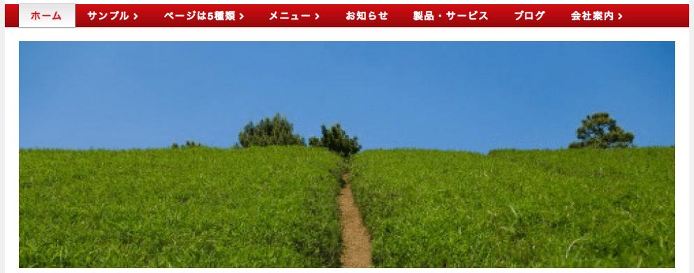 screenshot-thingscms-main-image-display-fs8