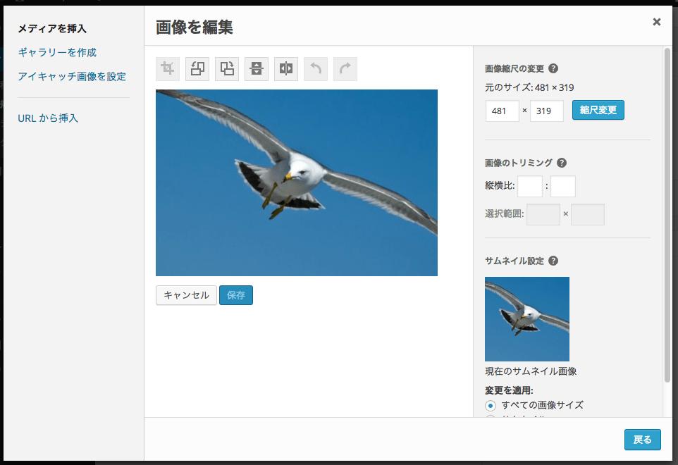 screenshot-media-library-post-edit-fs8